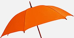 what is an umbrella company