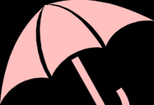 umbrella company chpice