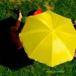 Umbrella Company Guide