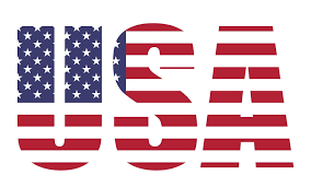 IT Contracting in the USA
