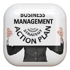 Public Sector Managers