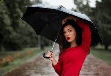Professional Umbrella Company