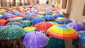 Public Sector Umbrella Companies