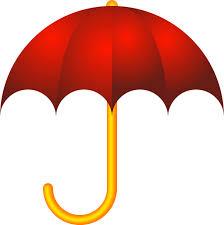 Professional Umbrella